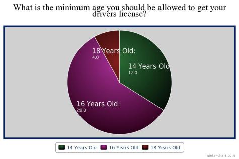 Students decide what minimum age for driving is appropriate.