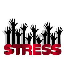 End of Term Brings Stress for Students