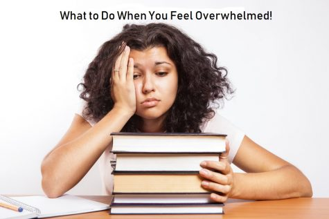 What to Do When You Feel Overwhelmed!