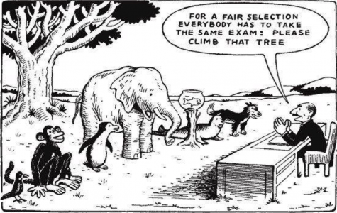 The Flaws in our Education System