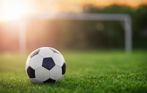 Davis High Boys Soccer, Season Preview 2019