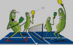 Nation's new sport… Pickle ball