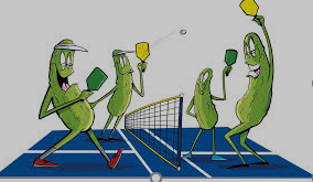 Nation's new sport... Pickle ball