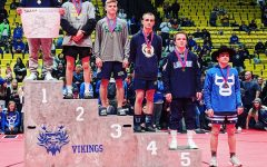 Wins and losses at state wrestling