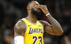 The Lakers Letdown Season