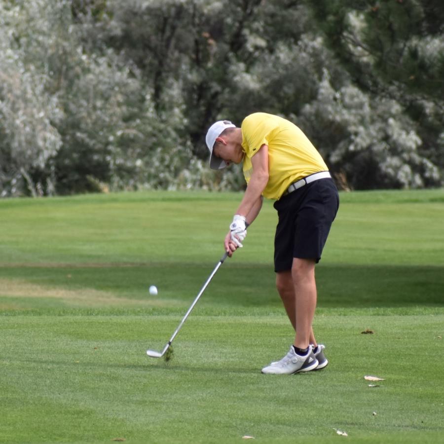 Golf Birdies through the Season