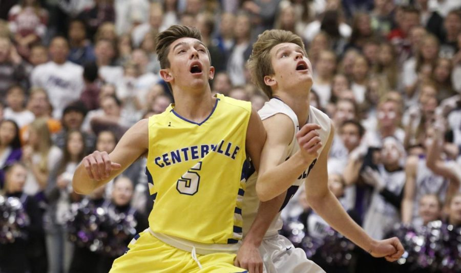 Davis Boys Basketball review: 2018-2019