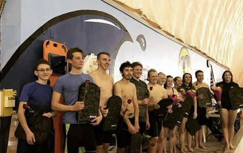 Davis High swim dives into region