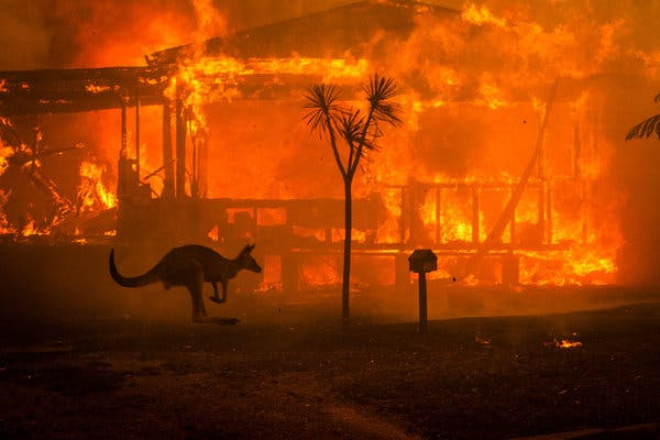 The Raging Fires in Australia