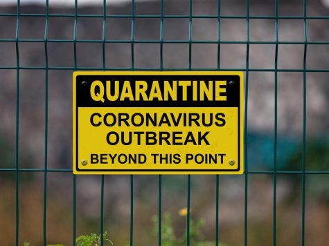 My quarantine journal
