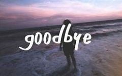 Navigation to Story: To all those who had to say goodbye too soon